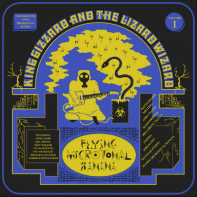 King Gizzard And The Lizzard Wizzard- Nuclear Fusion (Flying Microtonal Banana)