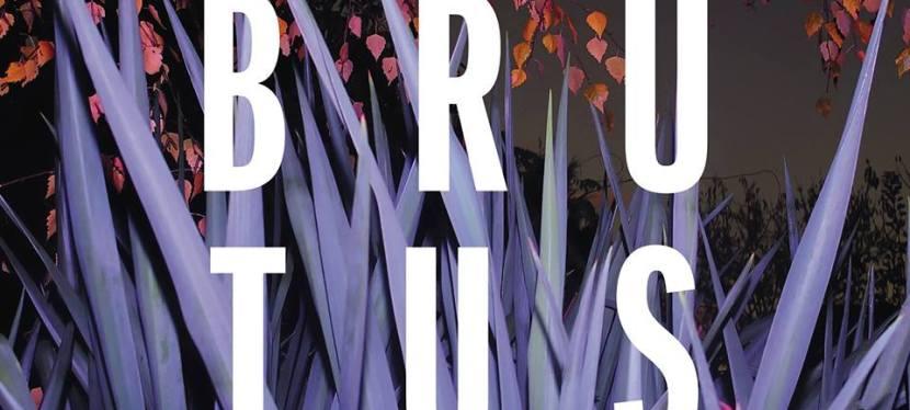listen to the energetic Belgium punk album Burst byBrutus