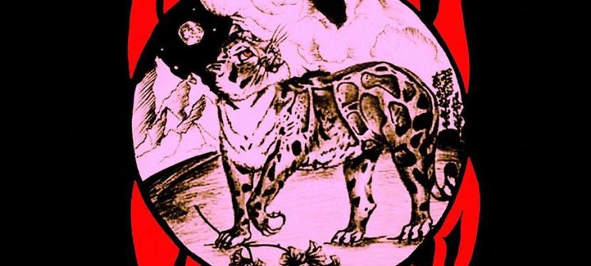 Nuvem Leopardo brings Brazilian/Argentinian Psych