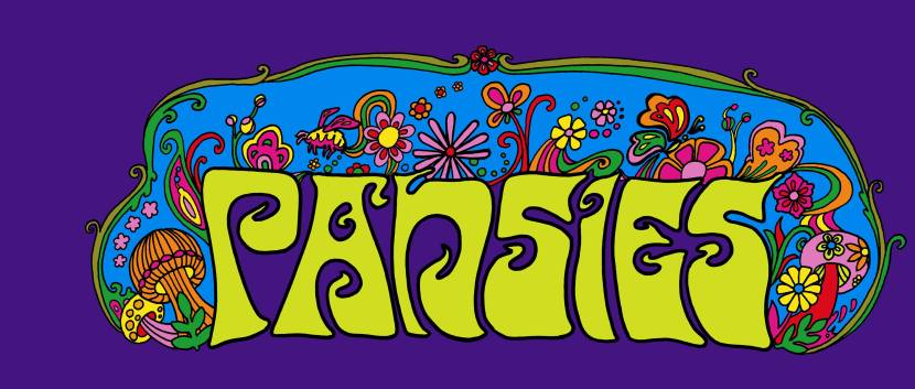 US dreamy psych bandPansies