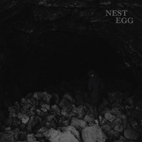 Nest Egg release first track on Fuzz Club