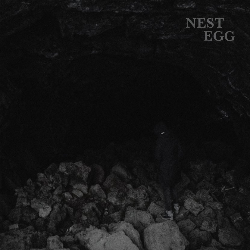 New song from NestEgg