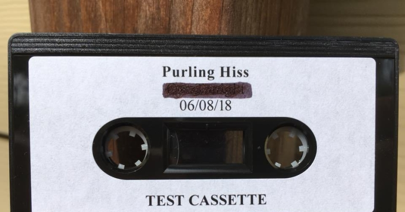 Purling Hiss is back with fuzzy new track
