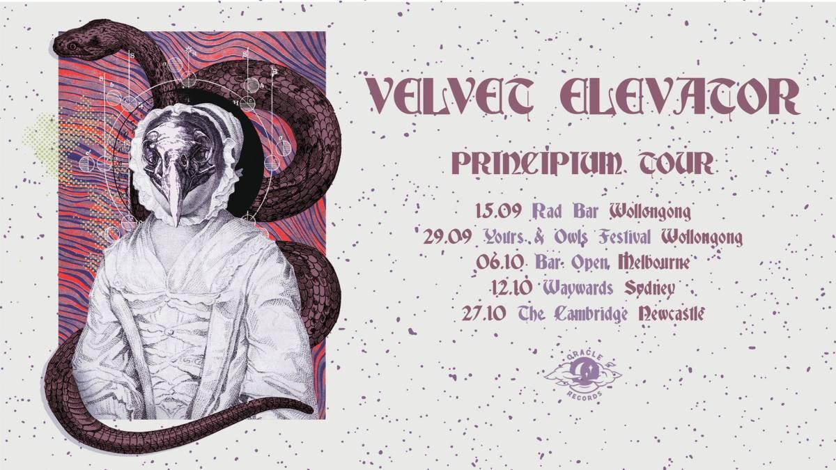 Velvet Elevator on Cardinal Fuzz