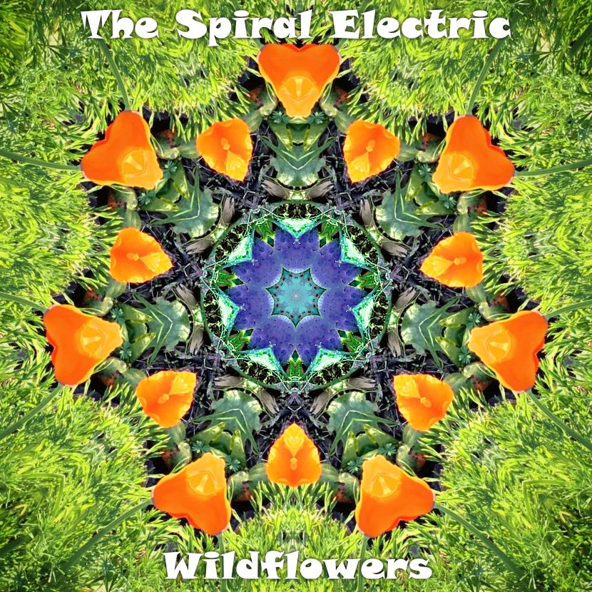 Premiere: The Spiral Electric's new track 'Wildflowers'
