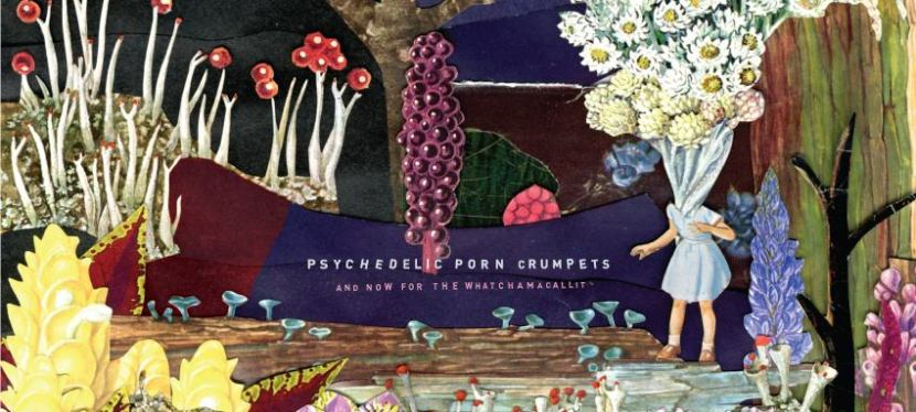 Psychedelic Porn Crumpets share 'Hymn For A Droid'