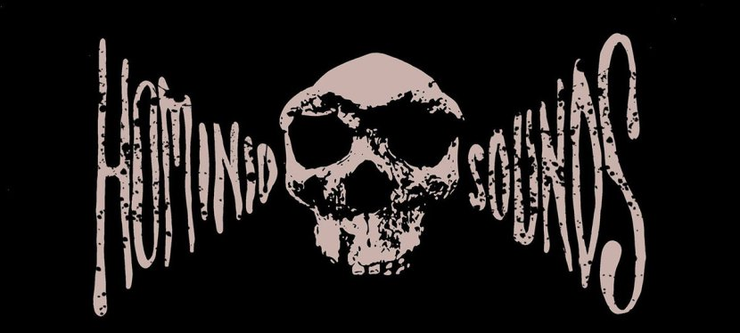 Hominid Sounds: A Particular History2016-2017