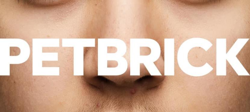 Petbrick share track from upcoming album on RocketRecordings