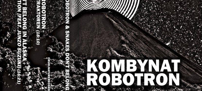 Kombynat Robotron / Snakes Don't Belong InAlaska
